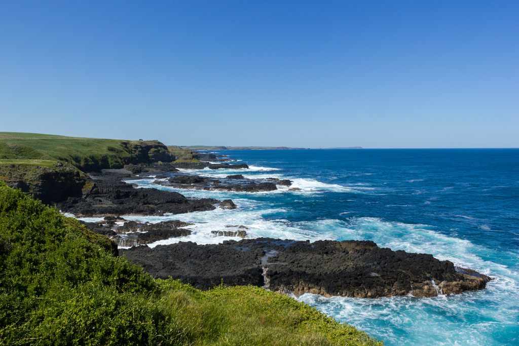 Day Trips From Melbourne: Phillip Island