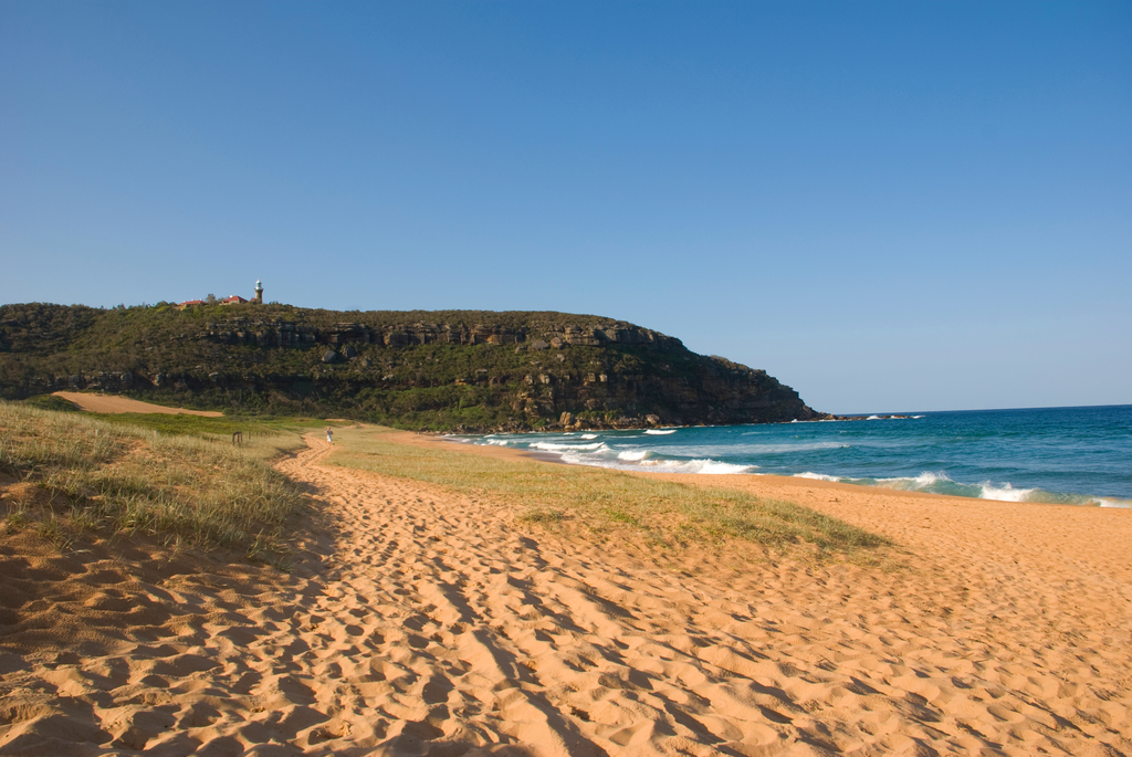Day Trips From Sydney: Palm Beach