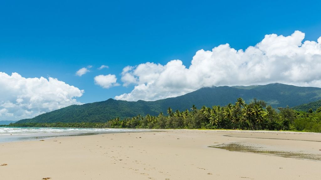 Day Trips from Cairns -  Cape Tribulation in Tropical North Queensland, Australia