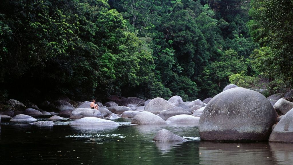 Day Trips from Cairns - Mossman Gorge