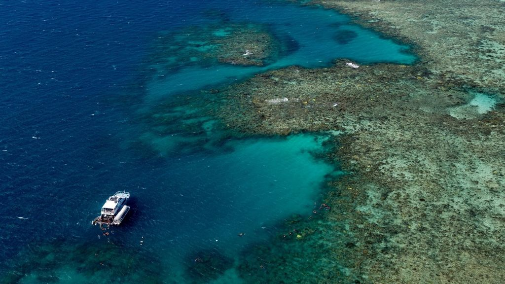 Day Trips from Cairns - Great Barrier Reef