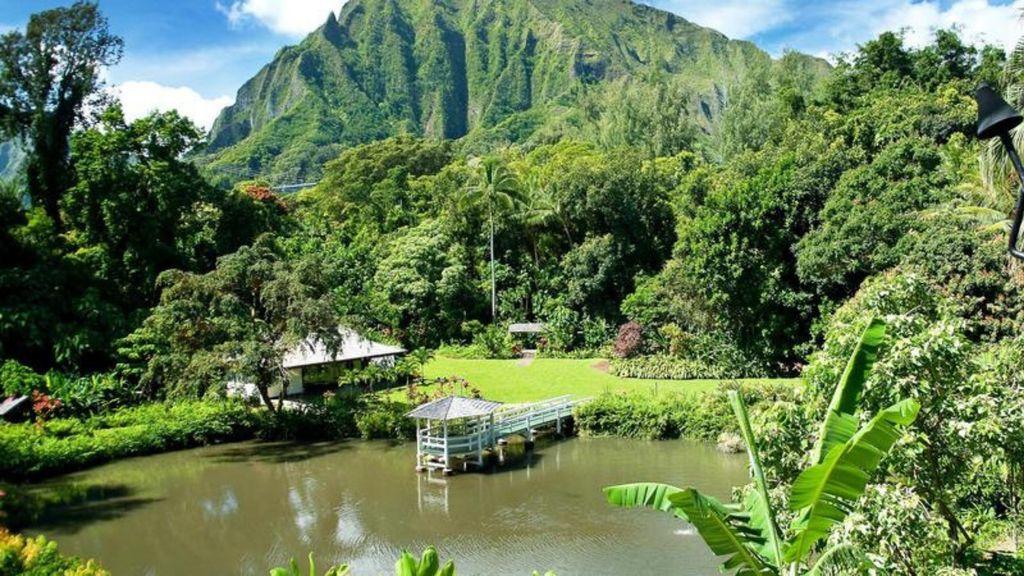 Visit Haleiwa Joe's and the Haiku Garden